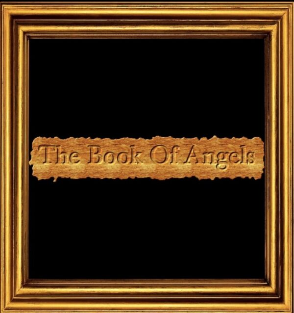 "Indie Soull Shows Appreciation For Life In "" The Book of Angels"""