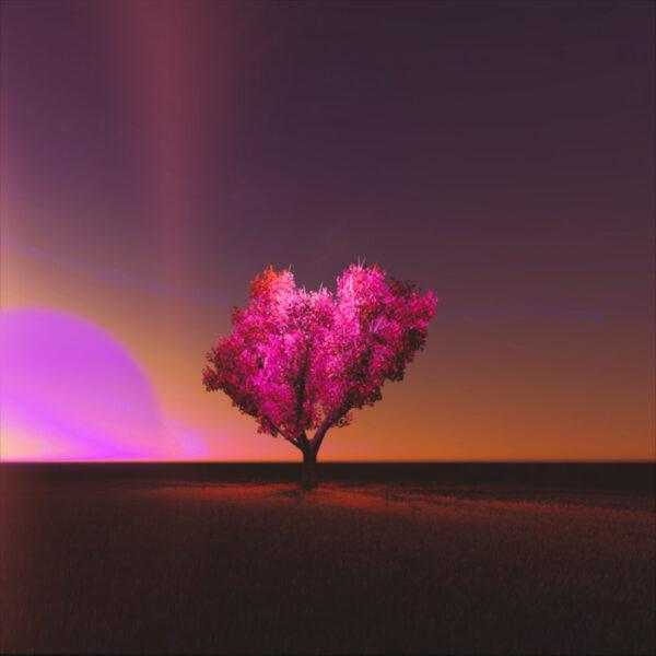 "ryan flynn – ""Automatic Love"""